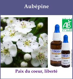 Aubepine 1