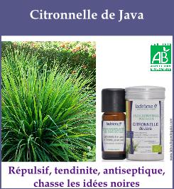 Citronnelle de java 9