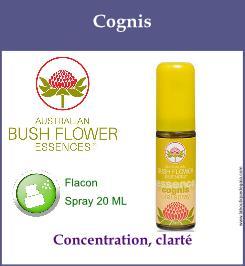 Cognis spray