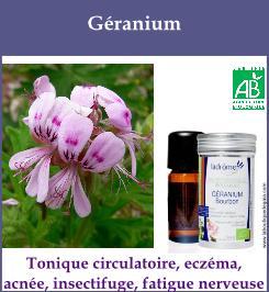 he geranium