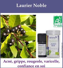 laurier noble