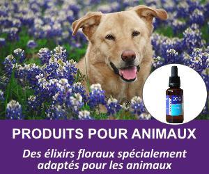 produits-pour-animaux
