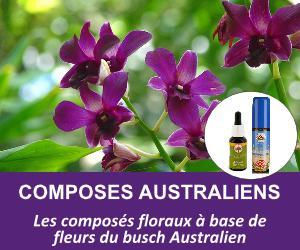 composes-du-bush