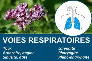 voie respiratoire