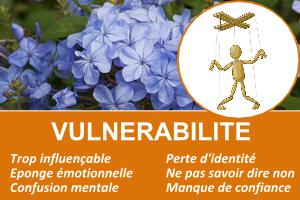 vulnerabilite