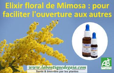 Post elixir floral mimosa