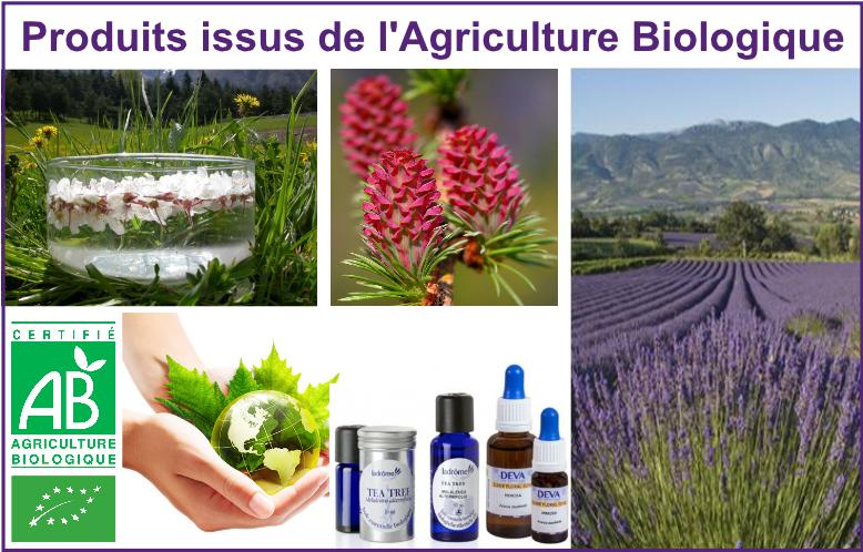 gallerie page accueil - agriculture bio V2-page001