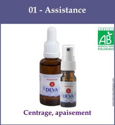 01 - Assistance
