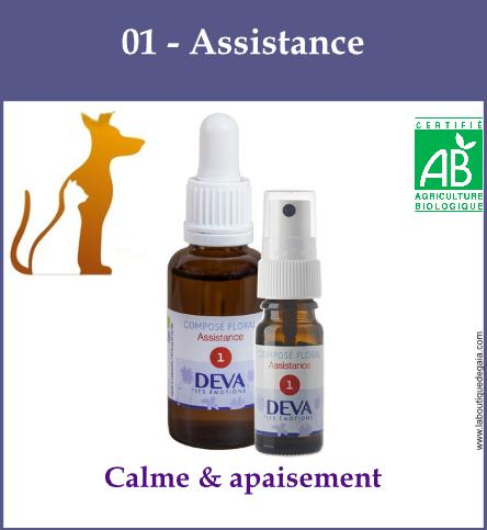 01 assistance animaux