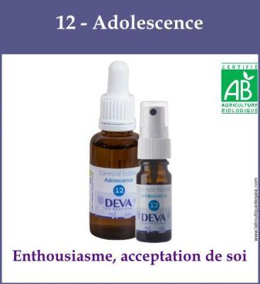 12 - Adolescence