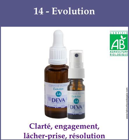 14 evolution 1