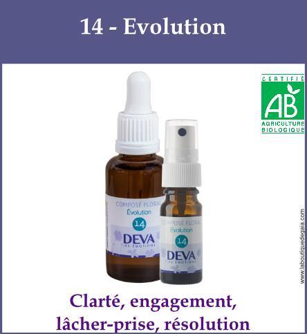 14 - Evolution