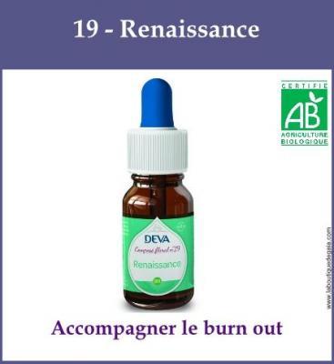 19 - Renaissance