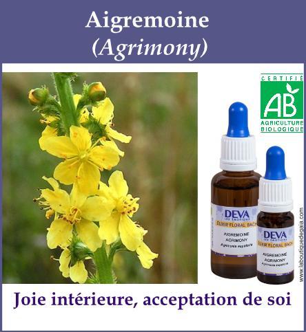 Aigremoine 4