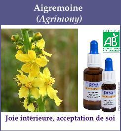 elixir floral aigremoine