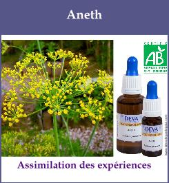 elixir floral aneth