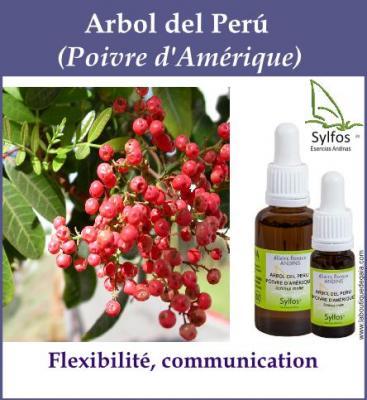 Arbol Del Perú
