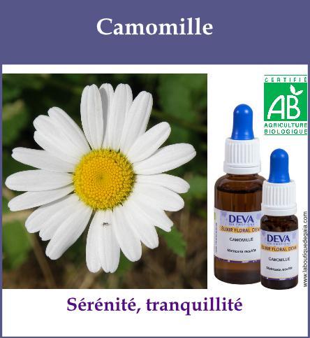 elixir floral camomille