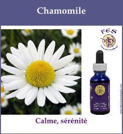 elixir fes chamomile
