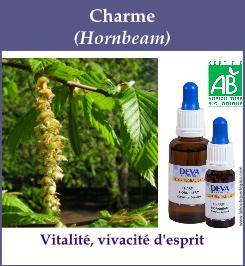 elixir floral charme
