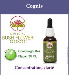 Cognis 1