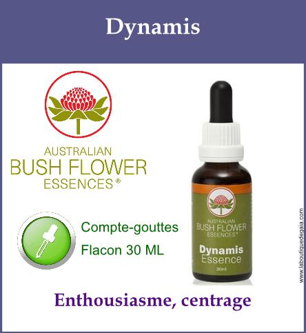 Dynamis 1