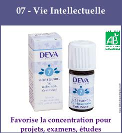 07 vie intellectuelle