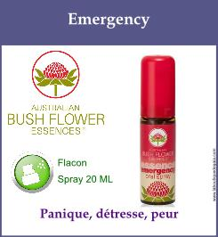 Emergency spray