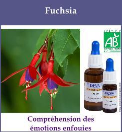 elixir floral fuchsia