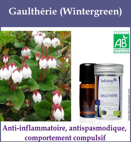 Gaultherie