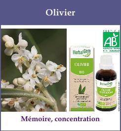 gemmo unitaire olivier