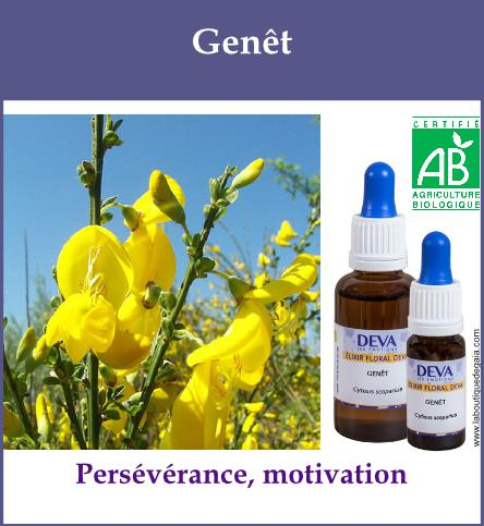 Genet 2
