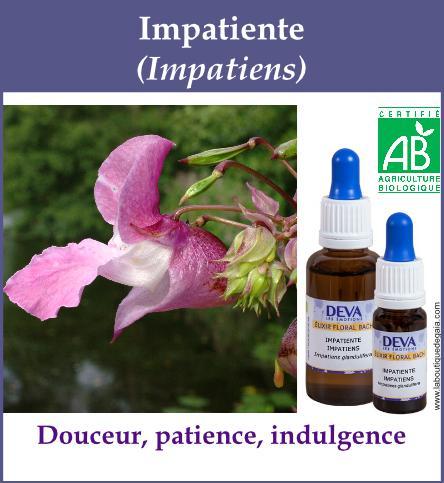 elixir floral impatiente