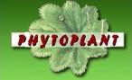 Logo phytoplant 1