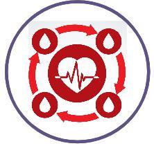 Logo theme systeme circulatoire