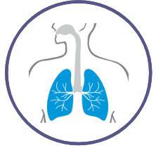 Logo theme voies respiratoires