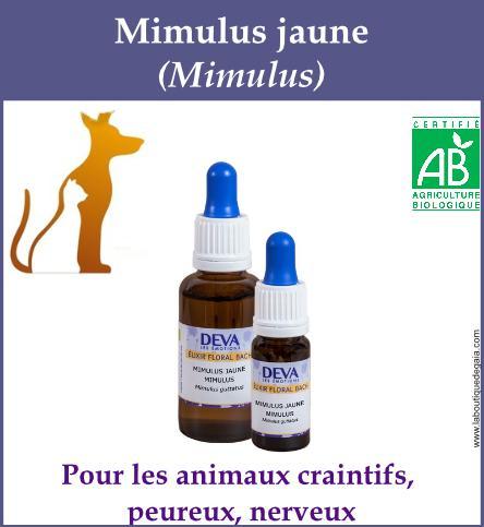 Mimulus jaune animaux