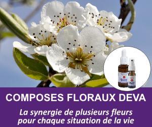 composes-floraux