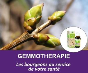 gemmotherapie
