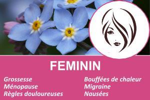 feminite