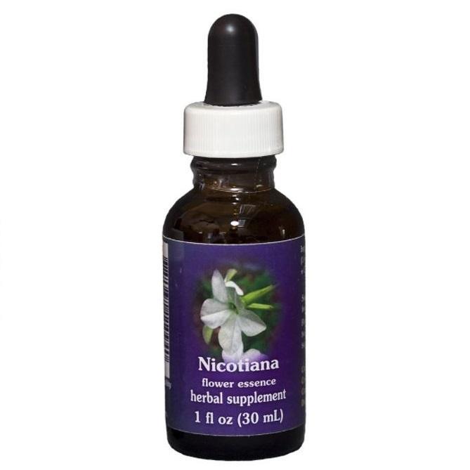Nicotiana 2