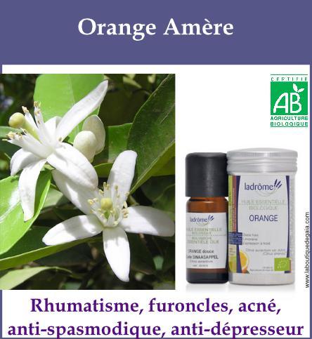 Orange amere 1
