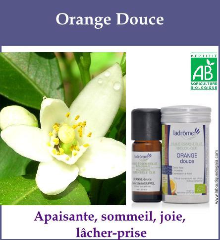 Orange douce 1