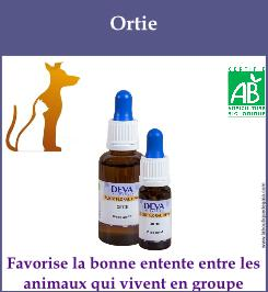 Ortie animaux