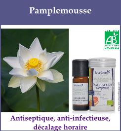 he pamplemousse