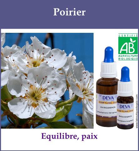 Poirier 2