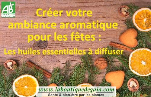 Post ambiance aromatique noel page001