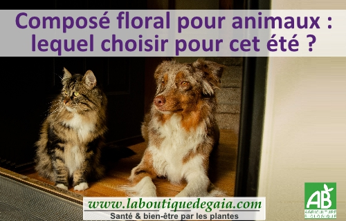 Post cf animaux page001