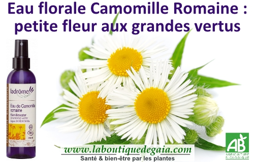 Post eau camomille 9