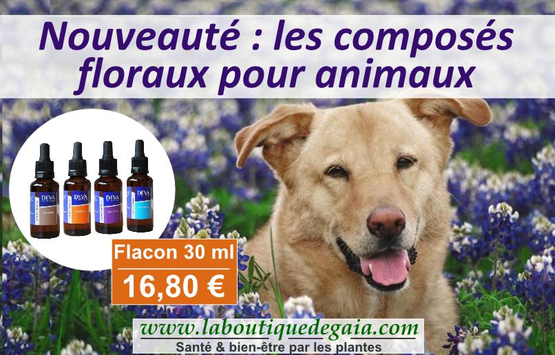 Post elixirs animaux